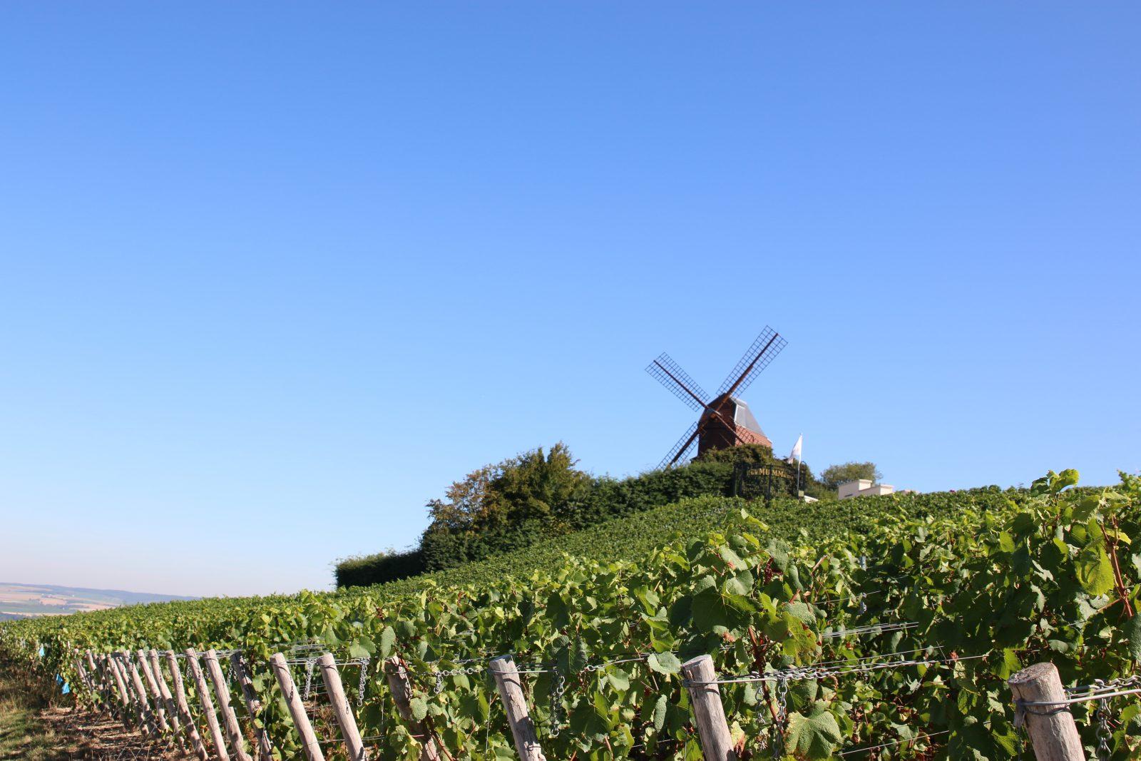 Le moulin de verzenay © Clément Richez